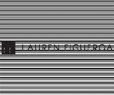 Lauren Figueroa Interior Design