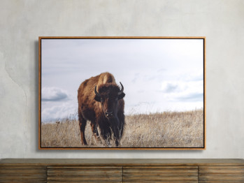 Great Plains 1 Framed Print