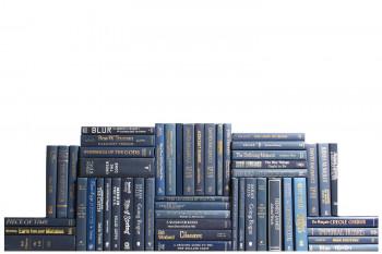 Modern Navy Book Wall, S/50